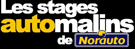 Logo Les stages automalins de Norauto